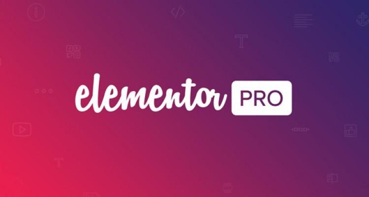232971-elementor-pro-v1110-live-form-editor/