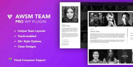 236130-the-team-pro-v122-team-showcase-wordpress-plugin/
