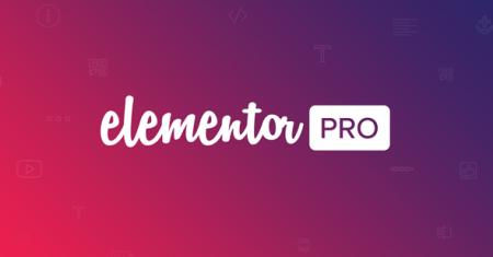 236125-elementor-pro-v243-live-form-editor/