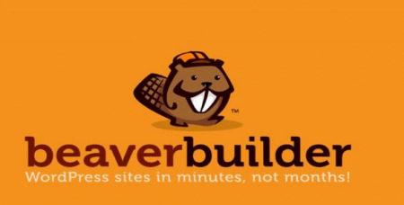 235917-beaver-builder-pro-v2204/